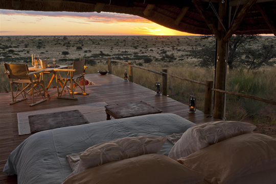 Disfrutar del sonido de la selva y de las estrellas, es posible en Sudáfrica.
