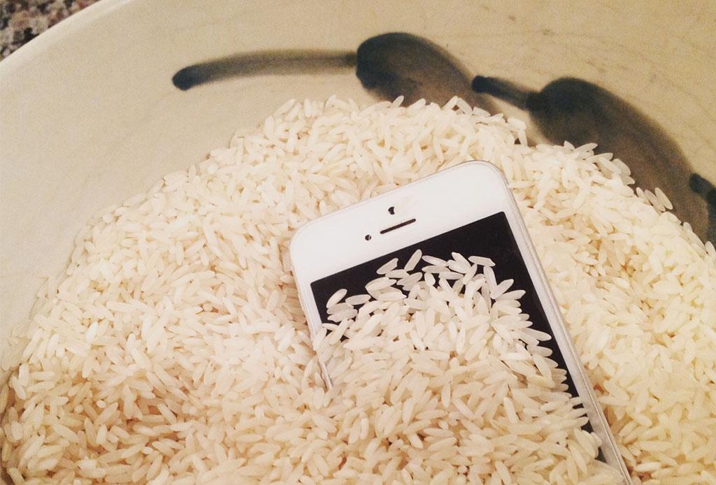 Resultat d'imatges de arroz en celular