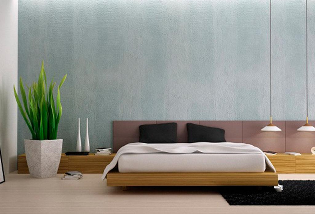 Tener estas plantas en tu cuarto te ayudar a dormir mejor - Plantas para habitacion ...